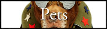 a collection of our pet photographs